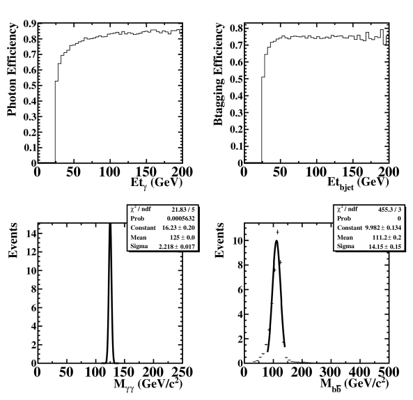 The identification efficiency of photon as a function of photon