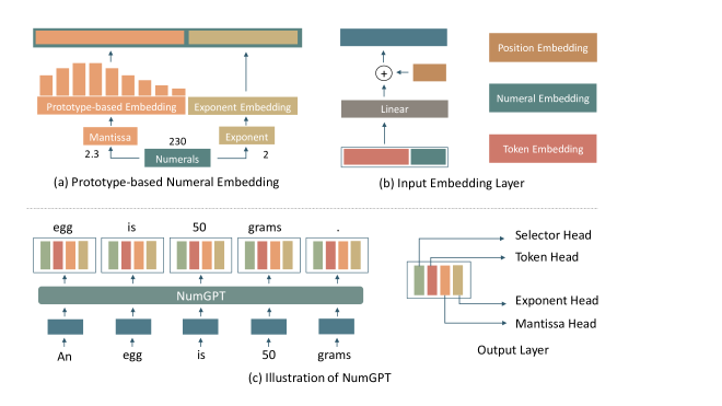 The model architecture of NumGPT: (a) We use prototype-based embedding to encode the mantissa of the numeral and use an individual embedding to encode the exponent of the numeral; (b) The numeral embedding and token embedding are fused in the input embedding layer; (c) NumGPT has four heads to control the output. If the Selector Head signals that it is a token, then it will use the Token Head to output a token. Otherwise, it will use Mantissa Head and Exponent Head to output a numeral.
