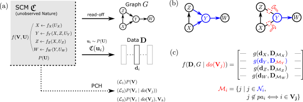 A schematic overview. (a) shows the unobserved SCM