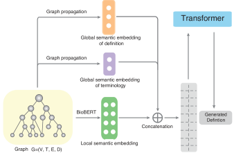 Flowchart of Graphex. Graphex considers the graph structure during definition generation by concatenating the global semantic embeddings and the local semantic embedding.