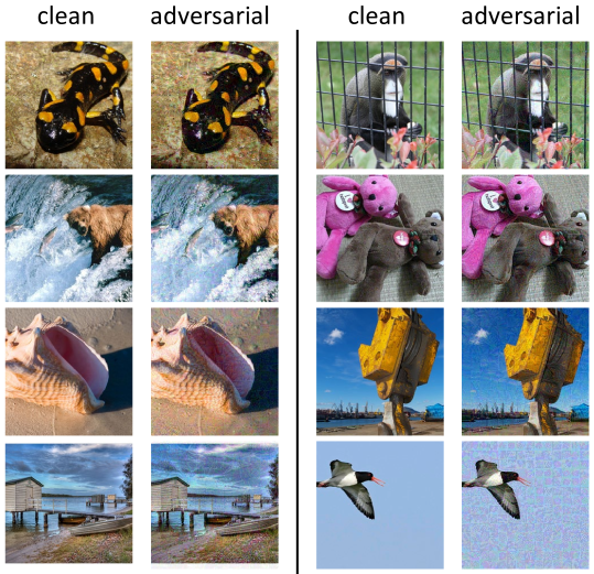 Visualization of randomly picked clean images and their corresponding adversarial images, crafted on the ViT-B/16 model using our dual attack.