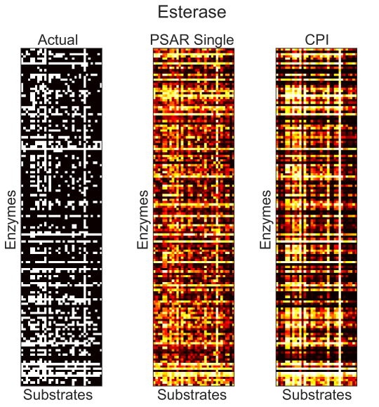 Ground truth binary enzyme-substrate activities (left) are compared against a single seed of predictions made through cross validation using a single-task ridge regression model (middle) and a CPI based model, FFN: [ESM-1b, Morgan] (right).